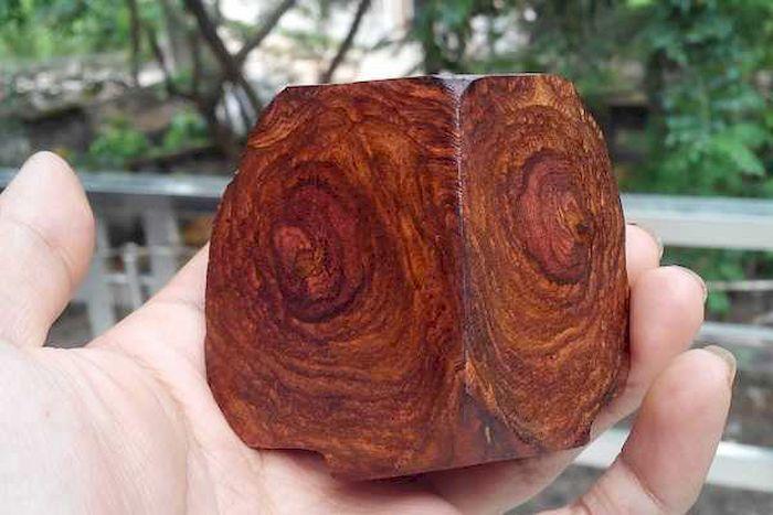 Hình dạng gỗ sưa đỏ