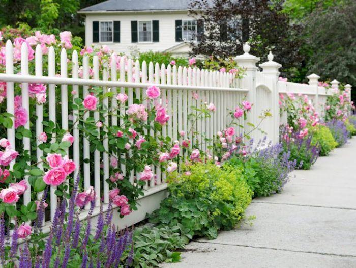 Hàng rào biệt thự bằng gỗ - View 2