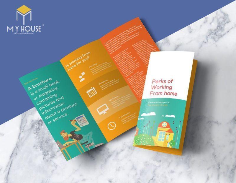 Thiết kế brochure ấn tượng - M3