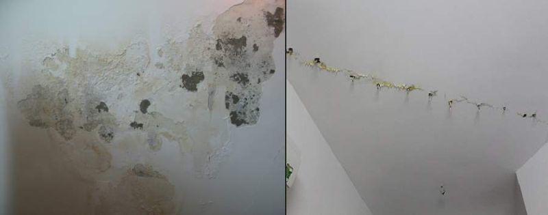 Nước ngưng đọng gây ra bong tróc sơn tường