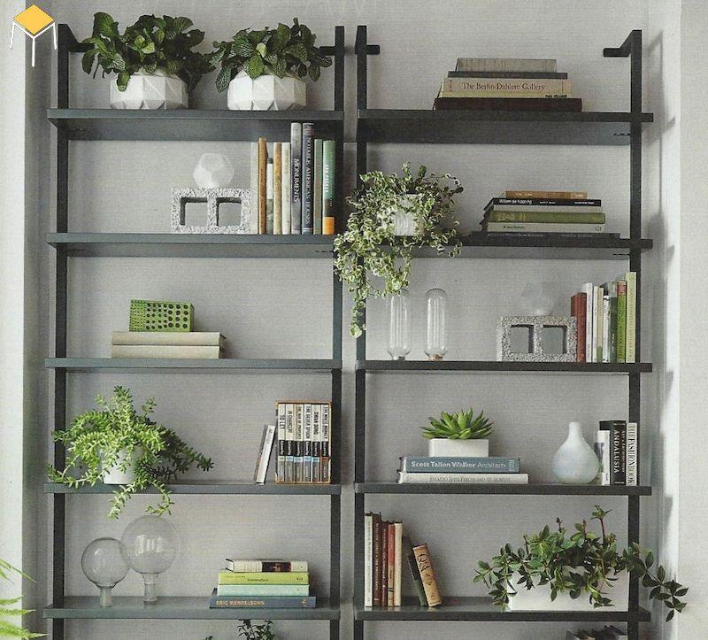 Ý tưởng trang trí văn phòng bằng cây xanh- 13