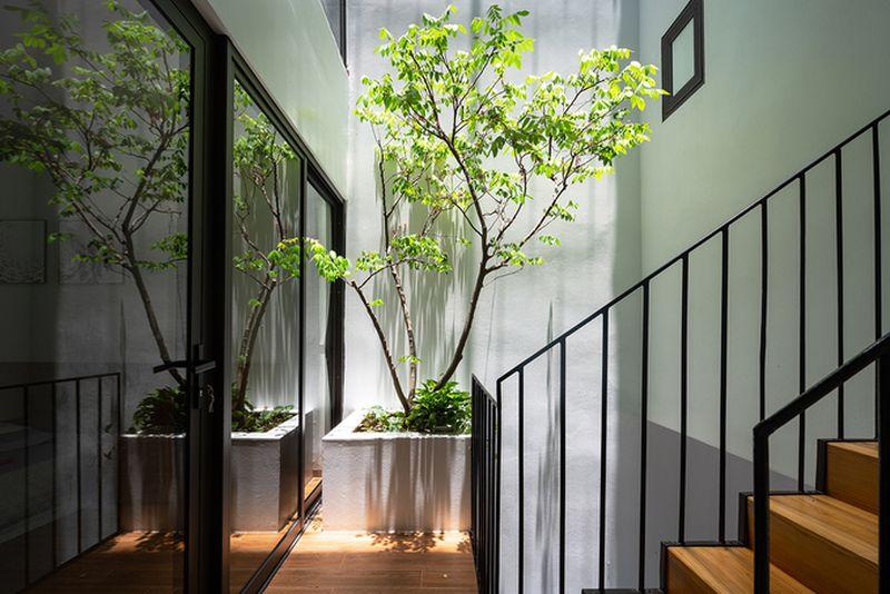 Thiết kế giếng trời trên cầu thang trang trí nhà đẹp