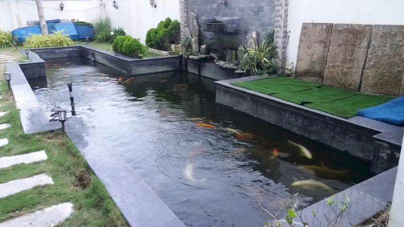 Bản vẽ hồ cá koi thể hiện số liệu chi tiết, hệ thống lắp đặt đường ống, lọc nước