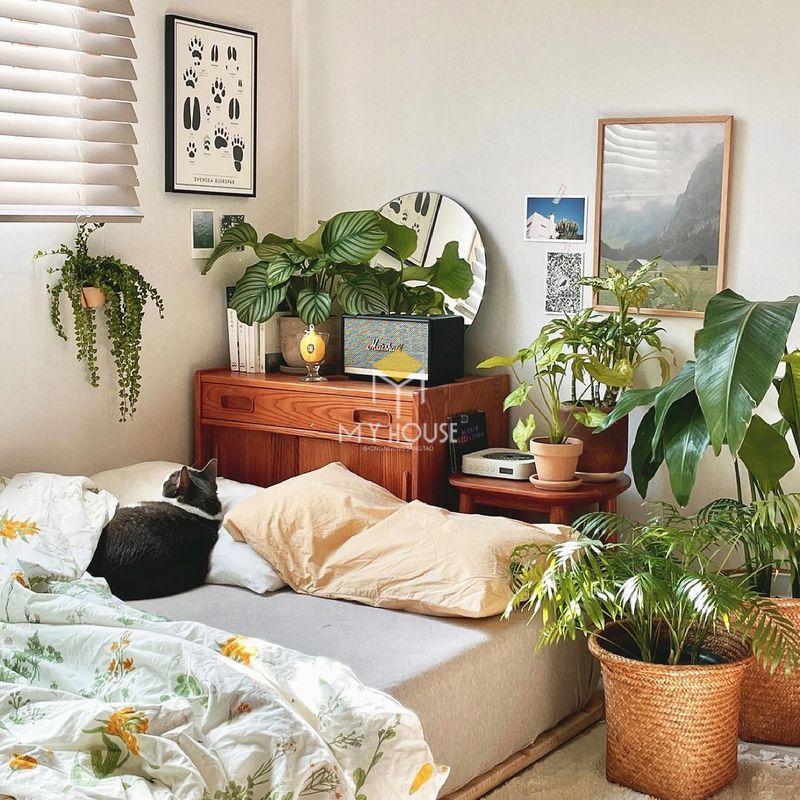 Đồ decor phòng ngủ bằng cây xanh, thanh lọc không khí