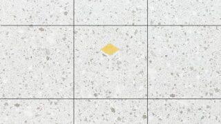 Map gạch lát sàn terrazzo 06