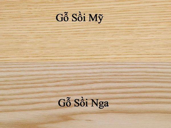 So sánh gỗ Tần bì và gỗ Sồi - Phân loại gỗ sồi Nga và gỗ sồi Mỹ